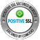 PSE Technik GmbH & Co. KG  - Positive SSL
